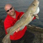 Icelandic shore cod