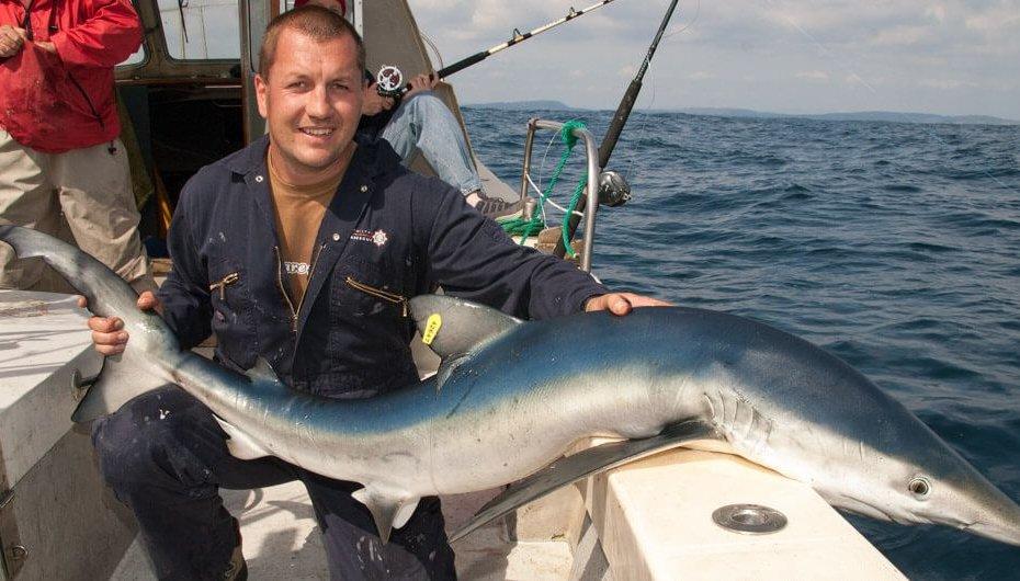 Baltimore blue shark