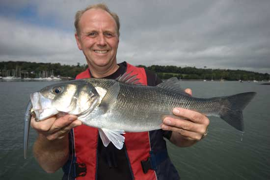 Bass Ireland