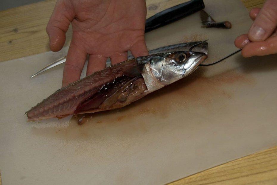 Half fillet mackerel