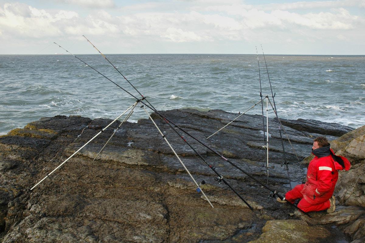 Berkley Powerbait Sandeels ALL VARIETIES Sea fishing tackle