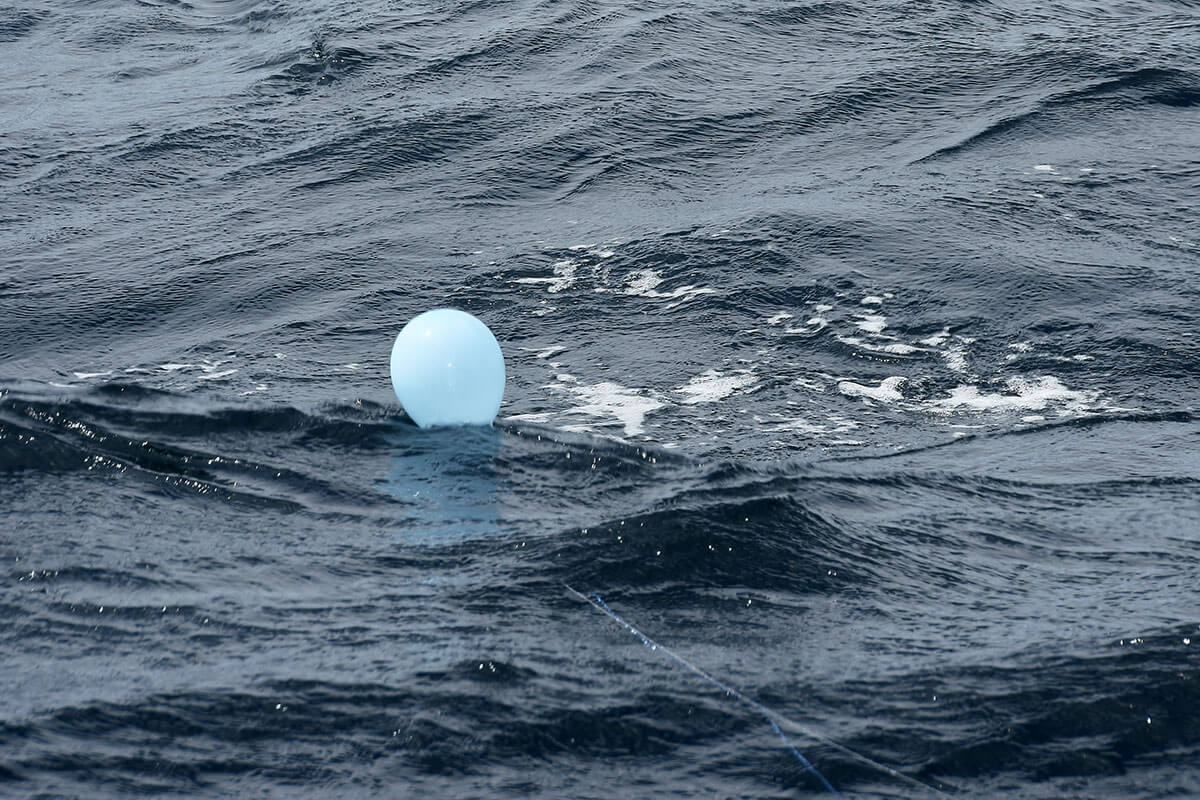 Balloons for shark fishing