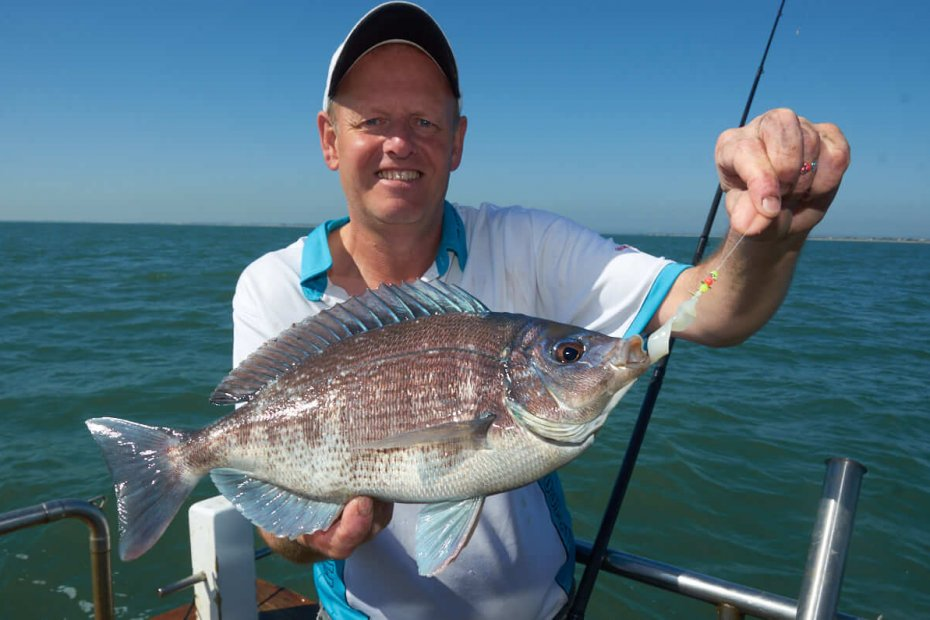 Black Bream Fishing