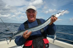 Garfish Fishing