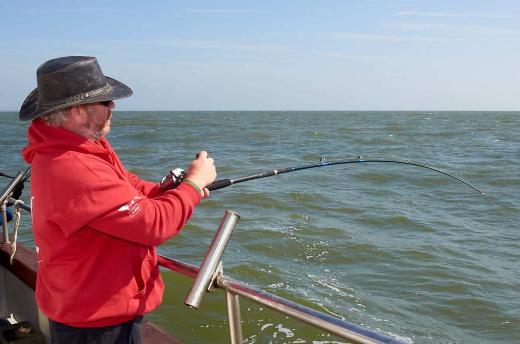 Boat fishing for undulate rate