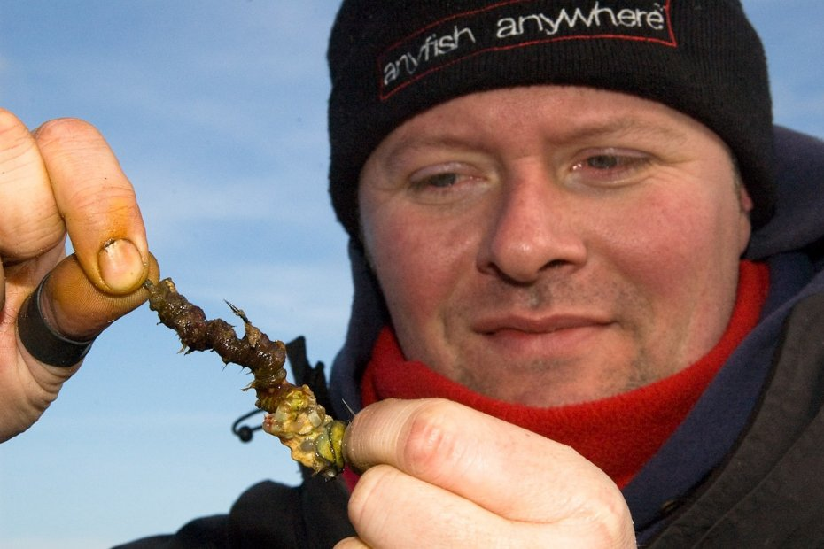Top Five Cod Fishing Baits