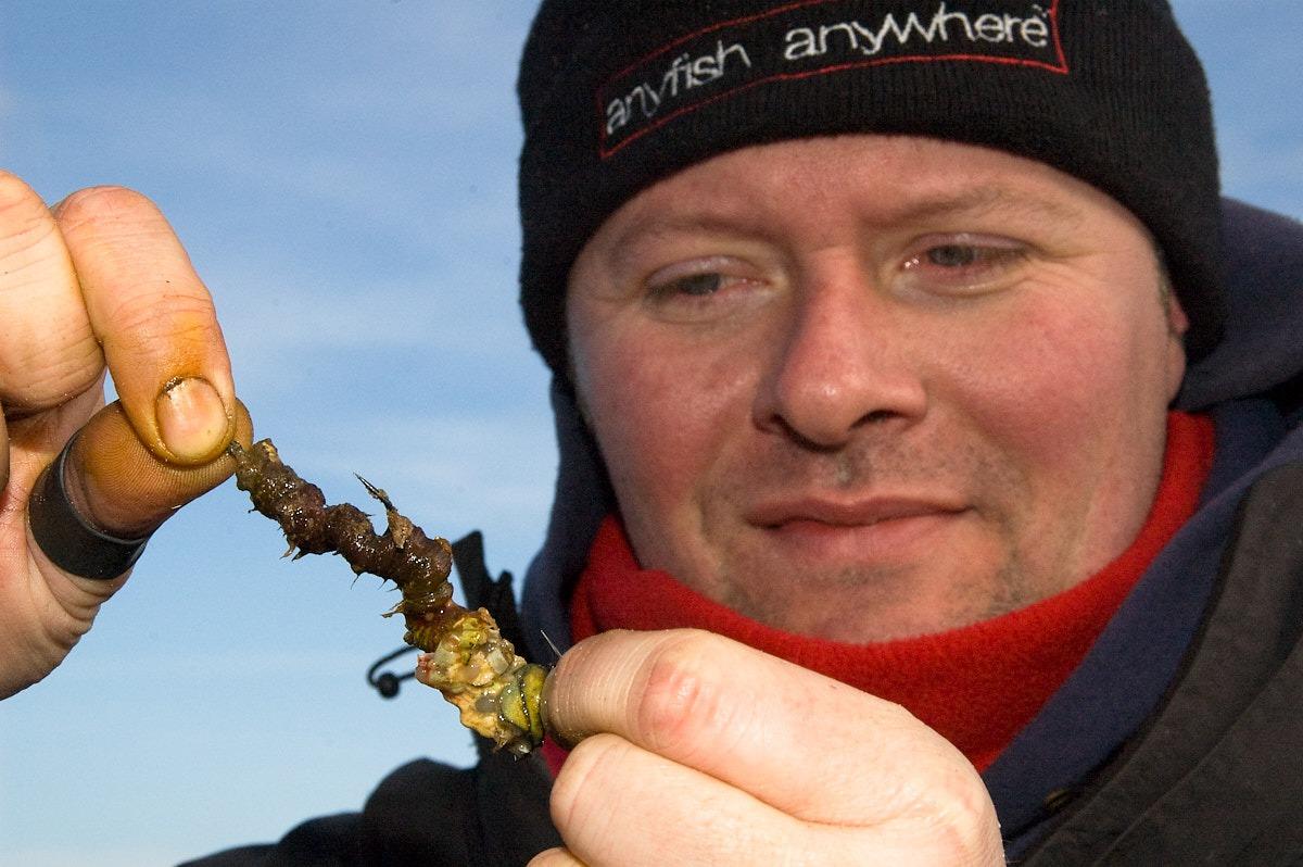 Top Five Cod Fishing Baits